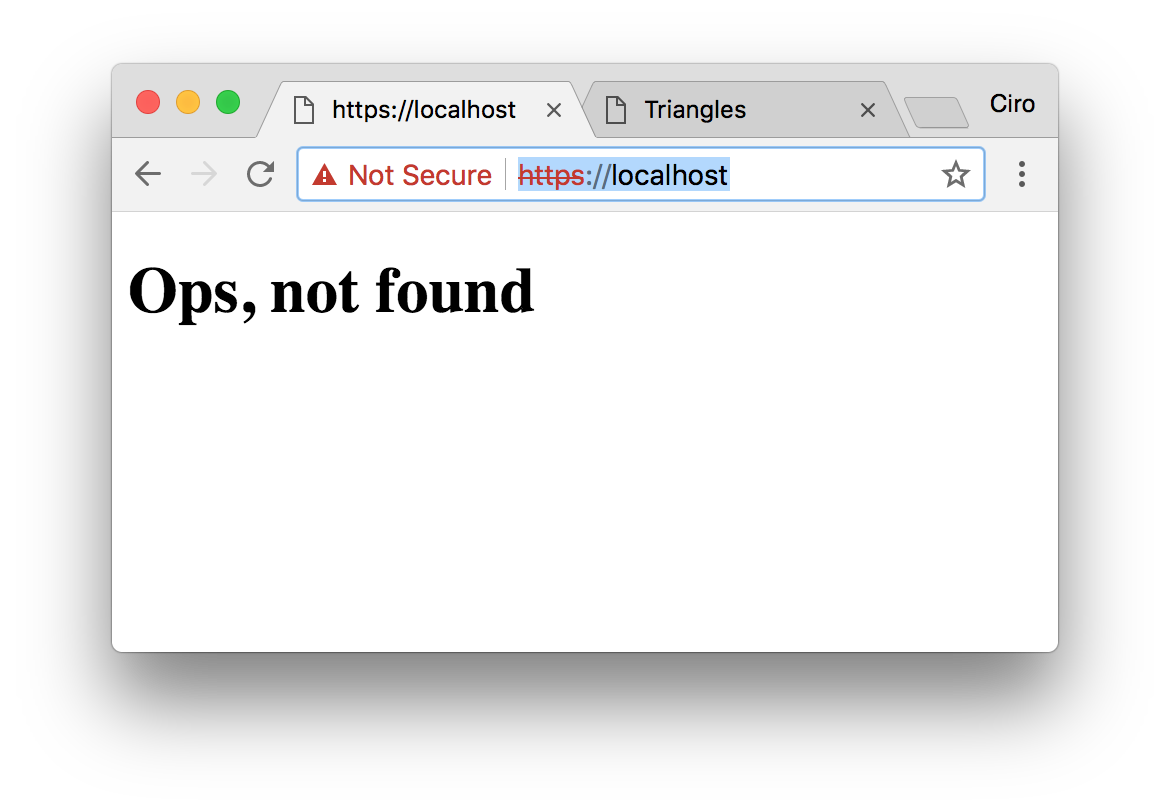 HAProxy showing the Not Found page that we've set before